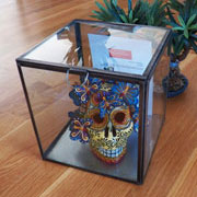 Display Curio Case Small Showcase Box