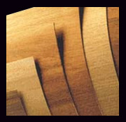 Wood Veneer with 3M Adhesive