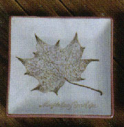 Homart Maple Porcelain Leaf Tray Discontinued, will not ship