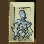 Octopus Aquatic Porcelain Tray by Homart HA-7013-184