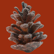 Pinecone Rusty Cast Iron Large Homart HA-1859-1