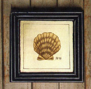 Scallop Seashell on Wood HA-1360-24