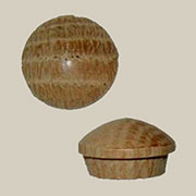 Flanged Round Head Button Plugs 50 Count 5/8 Oak  W3-6535